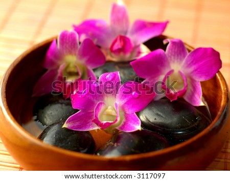Purple orchids in wooden bowl