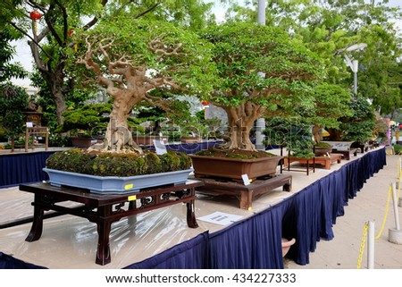 PUTRAJAYA, MALAYSIA - May 27, 2016 - The Bonsai exhibition section in the inaugural annual event of Royal FLORIA Putrajaya Flower and Garden festival.