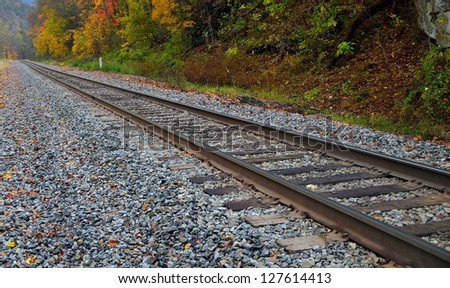 Railroad track in the autumn forest