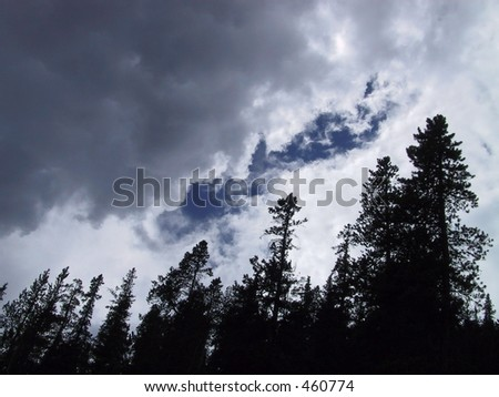rain clouds storming over trees in Banff, Alberta