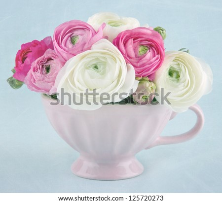 Ranunculus flowers in a pink cup on light blue textured background
