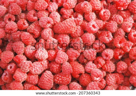 raspberry; a lot of  berries;background