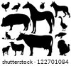 raster - on the farm - set of detailed animals silhouettes - black outlines over white (vector version is available in my portfolio) - stock photo