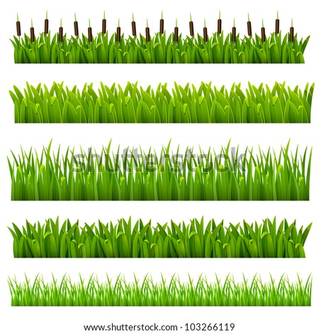 Cartoon Jungle Grass Raster version of vector set