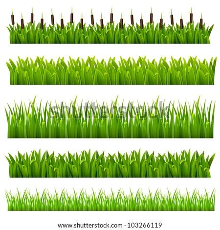 Cartoon Jungle Grass Grass of green border.
