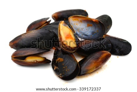 raw mussels isolated on white background