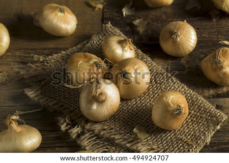 Raw Organic Cipollini Onions Ready for Cooking