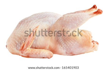 Raw quail isolated on white