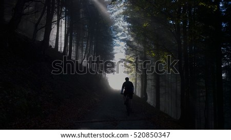 Rays and the cyclist