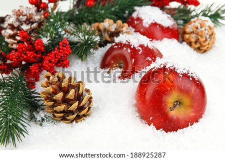 Red apples with fir branches in snow close up