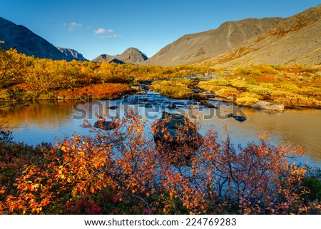 Red birch foliage at the edge of freshwater lake in Malaya Belaya river walley in front of colorful birch forest and shadowed mountain peaks, Hibiny mountains above the Arctic Circle, Russia