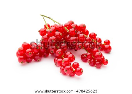 Red currants still life isolated on white background.