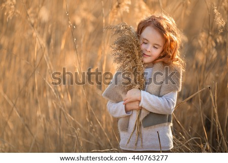 red-haired girl in the autumn grass field with a bouquet of ears of corn