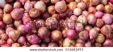 Red Onion Selling at market