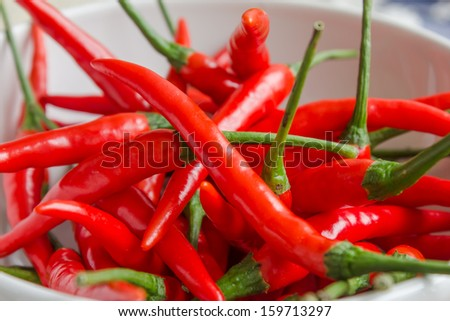 Kitchen Curtains chili pepper kitchen curtains : Colorful Small Chili Pepper Plant Orange Stock Photo 18542206 ...