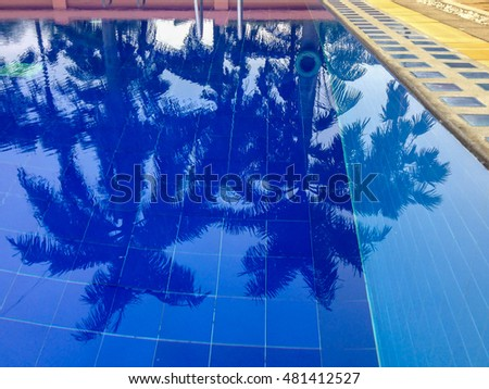Reflection Shadow of coconut trees and sugar palm tree in  swimming pool.