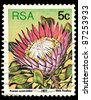 REPUBLIC OF SOUTH AFRICA - CIRCA 1977: A stamp printed in Republic of South Africa shows image of Protea cynaroides King Protea), circa 1977 - stock photo
