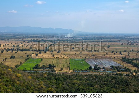 Rice field with mountain blue sky and cloud Landscape view .