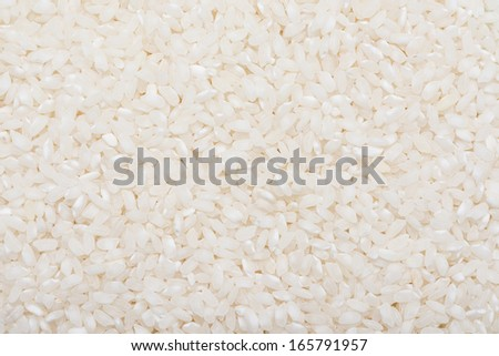 Rice Seeds Closeup Details Background