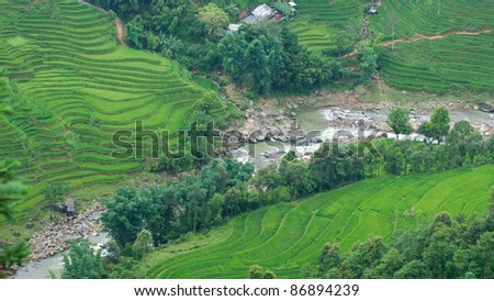 Rice terraces and river in Sapa Valley, North Vietnam