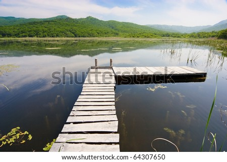 rickety wooden bridge across the lake overgrown with reeds