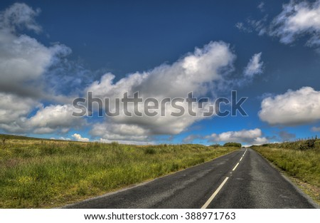 Road at the national park