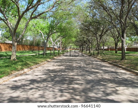 Road lined with trees in Sugar Land, Texas, USA