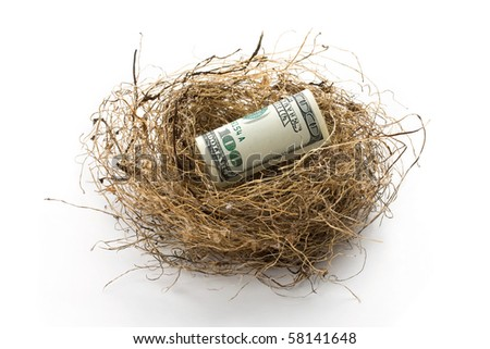 Roll of hundred US dollar bill laying in bird nest with soft shadow. Concept of retirement nest egg or savings.