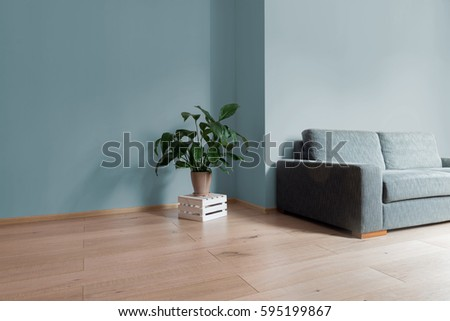 Room Interior With Bright Wooden Floor Pale Blue Wall Modern Comfortable Sofa And Plant