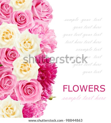 Roses and peonies background isolated on white with sample text