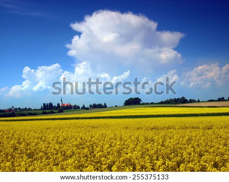 Rural landscape with yellow rape field and summer sky with storm clouds