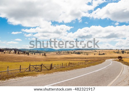 Rural nature. Beautiful summer landscape with field and forest