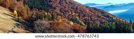 Rural road in autumn misty mountain and colorful trees on slope. Panorama.