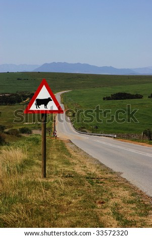 Rural road in Western Cape with Cow sign in foreground