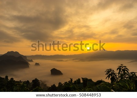 Rural view in the morning with sunrise and fog environment