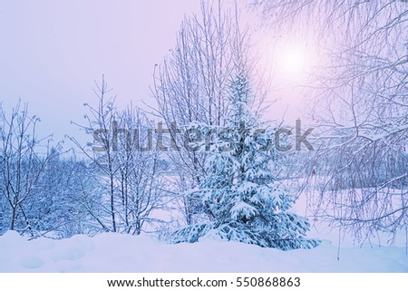 rural winter landscape with snowdrifts and snow-covered trees with solar light