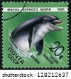 RUSSIA - CIRCA 1991: stamp printed by Russia, shows dolphin, whale, water, circa 1991 - stock photo