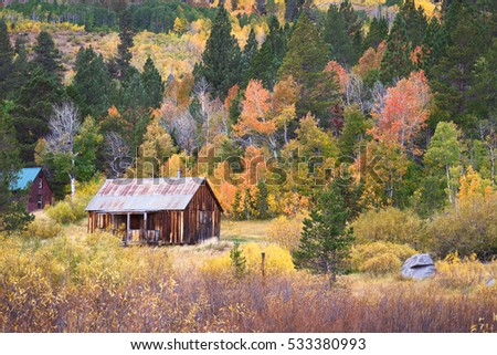 Rustic barn with fall colors in Hope Valley, California