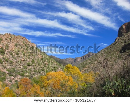Sabino Canyon Blue Sky