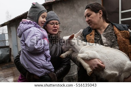 Saint-Petersburg, Russia - December 14, 2014: Goat Saanen. The woman in the yard with a group of purebred goats personally grown it. The kid on the hands.