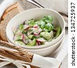 Salad with radishes and cucumbers - stock photo