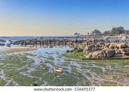 Salga coastal rocks at low tide in Arousa Island