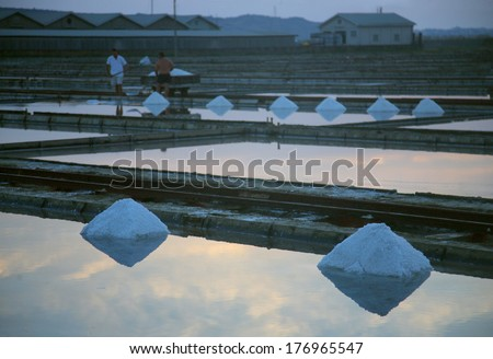 Salt Collecting in Slovenia