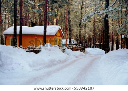 Sanatorium in winter forest with snow-covered road around tree