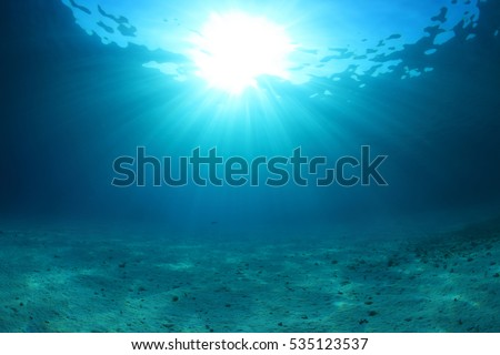 Sandy sea floor of the red sea