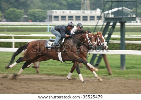 SARATOGA SPRINGS, NY- AUGUST 16: Two horses trained by George Weaver breeze side by side in morning workouts at Saratoga Race Track, August 16, 2009 in Saratoga Springs, NY.