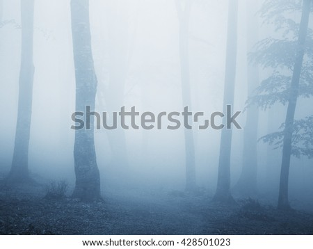 Scary blue fog into a cold autumn day