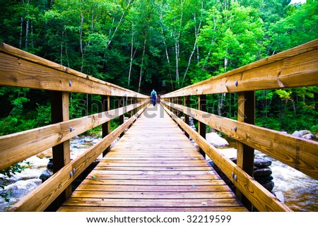 Scary Wooden Bridge Crossing