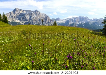 Scenic landscape with a meadow grass and the Dolomites rocky mountains La Varella and Conturines