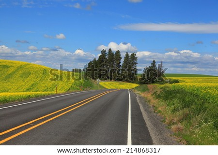 Scenic road through Palouse county in Washington state
